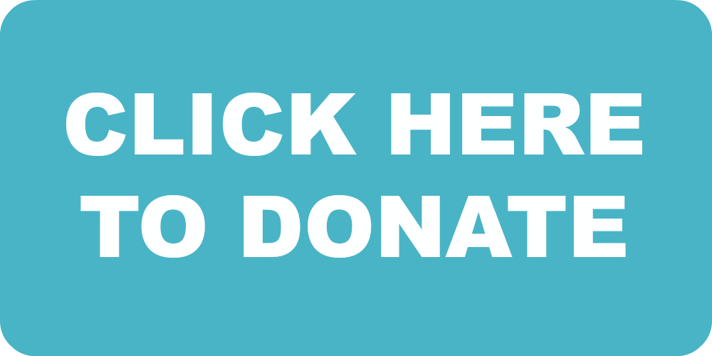 Click here to donate button